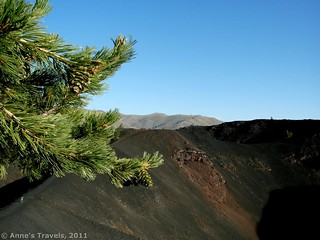 Pine Tree near a Crater | by Anne's Travels3