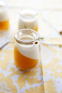 Panna Cotta with mango gelee | by anhsphoto_busy!!