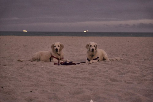 Frisket & Sailor Take South Beach (Take Ⅱ) | by epc
