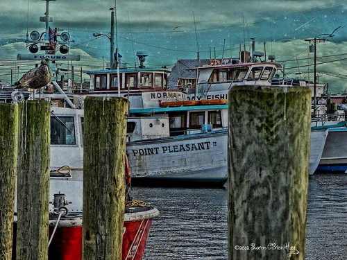 Point pleasant one of the many commercial fishing boats for Fishing boats point pleasant nj