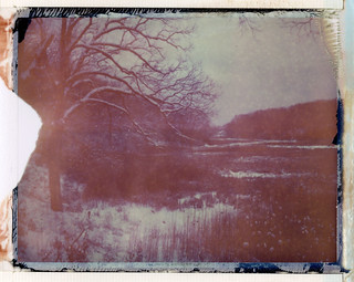 1-21-12 overlooking the marsh | by philipgreene