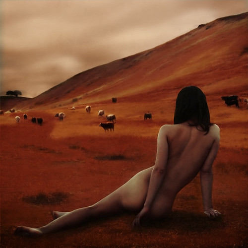 a new land | by brookeshaden