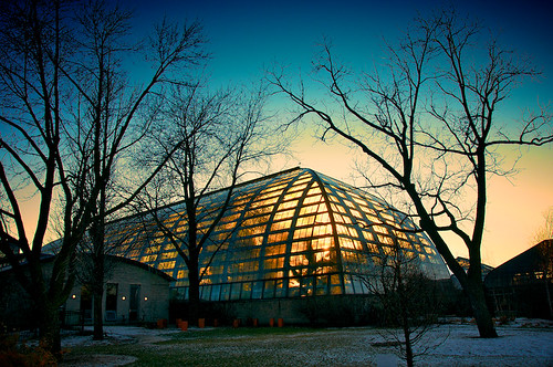 Garfield Park Conservatory | by Michael Patrick Perry