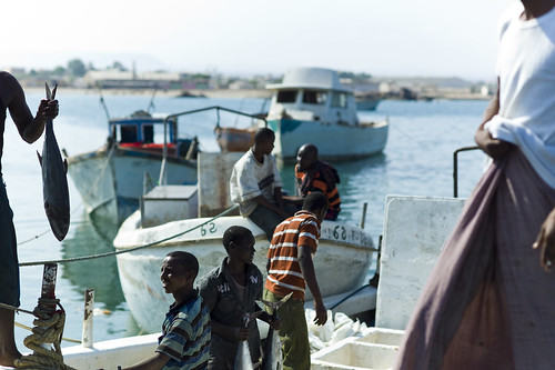 Fisherman in the port of Berbera, Somaliland | by Alfred Weidinger
