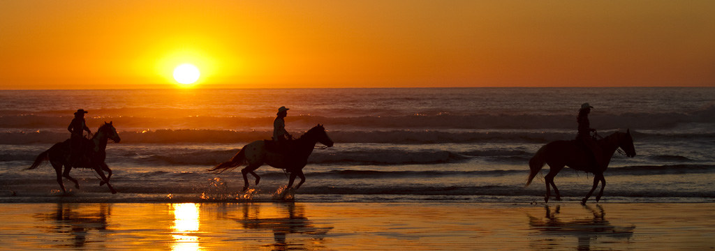 Horses on the beach at sunset mducci flickr horses on the beach at sunset by mducci sciox Choice Image