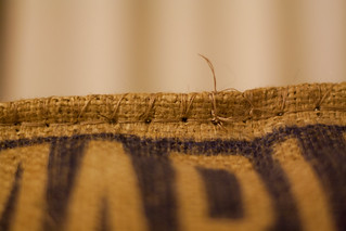 Burlap Sac Seating | by aaron.delani