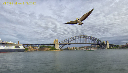 Habour Bridge - Sydney - 31-1-2012 | by VTCH
