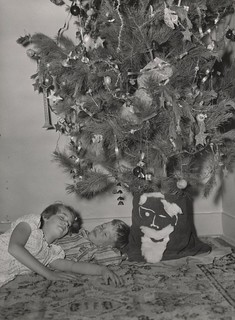 Sleeping under the Tree | by State Library Victoria Collections