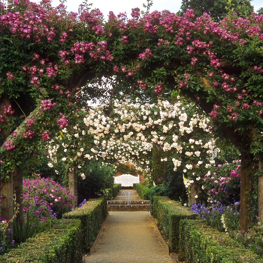 Mottisfont Abbey Rose Garden, Hampshire, UK | An outstandi… | Flickr
