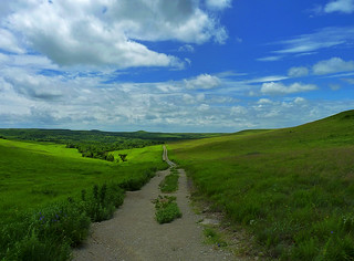 path to the konza | by ctfy