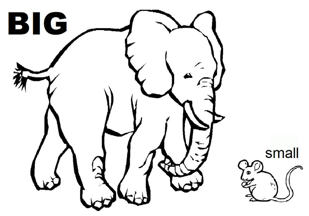 opposites coloring sheet we handed out this flickr coloring big and small - Big And Small Coloring Pages