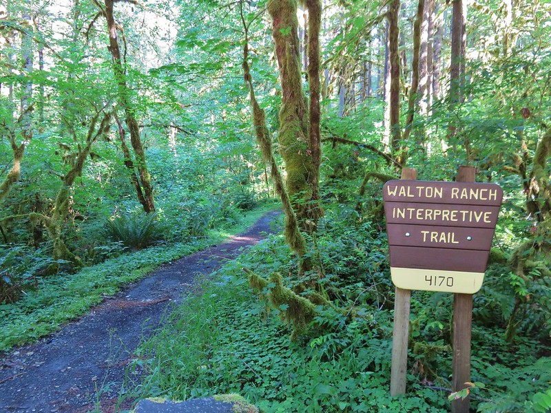 Walton Ranch Interpretive Trail Trailhead