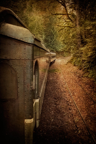 Lake Whatcom Railway | by EdBob