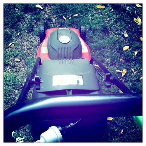 Mowing the lawn. Day 48/366. | by Jaycee1