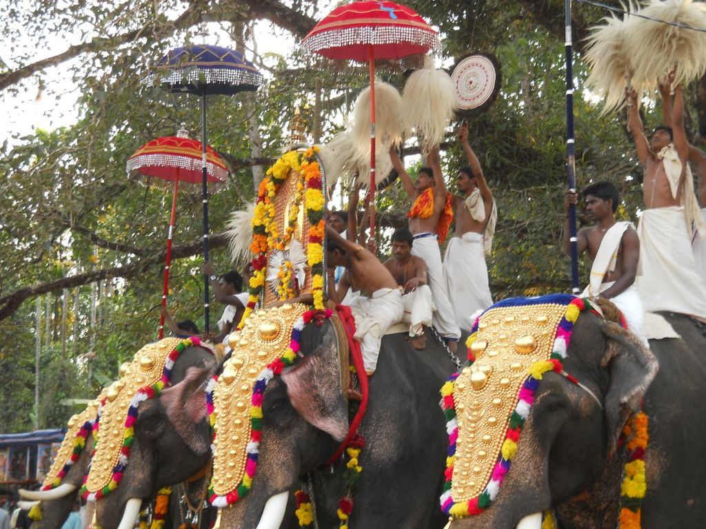 Festival Temple Kerala Elephants With Decorated Head Cover Flickr