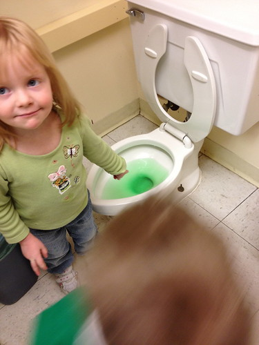 What have the leprechauns done to the potty?! | by susansimon