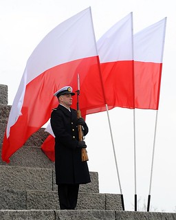 Sailor of the Navy of the Republic of Poland Stands to Attention in Front of Polish Flag | by Defence Images