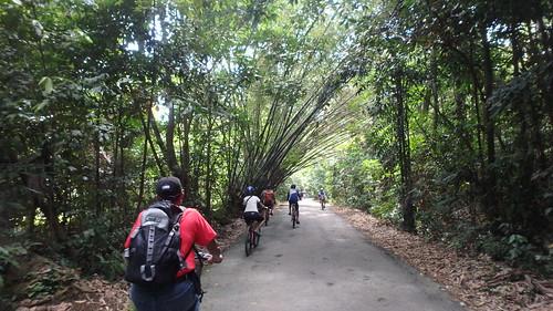 Cycling at Pulau Ubin