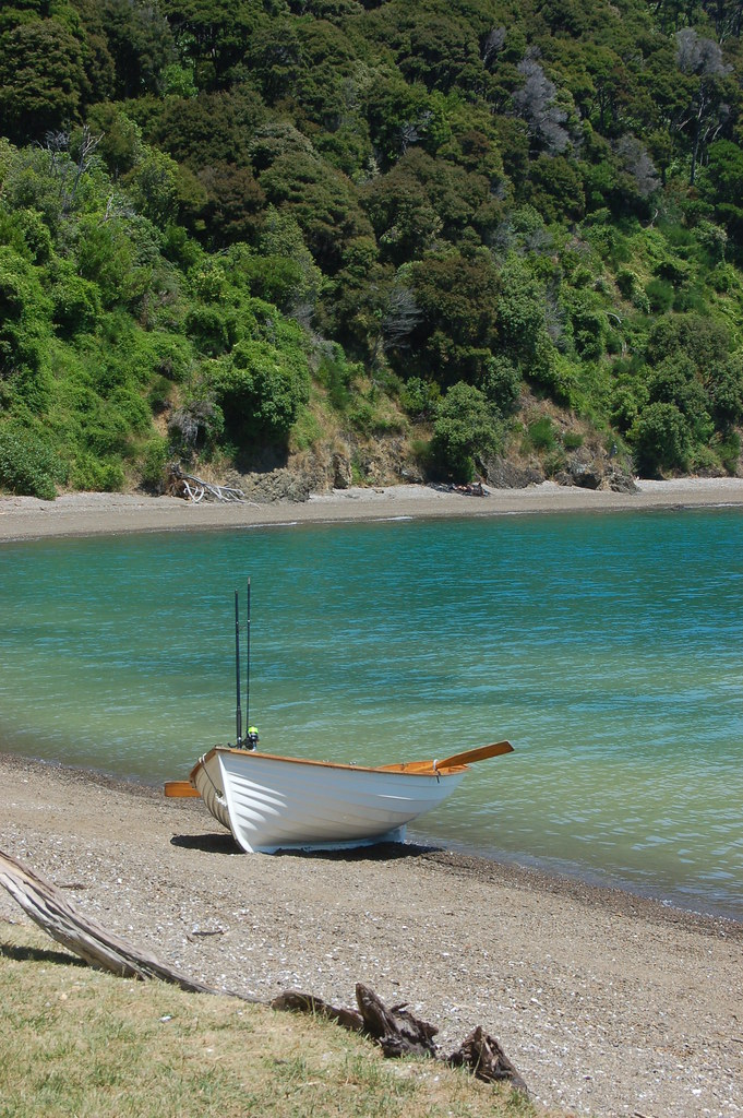 2009 Jan NZ Cook Strait - Picton 276