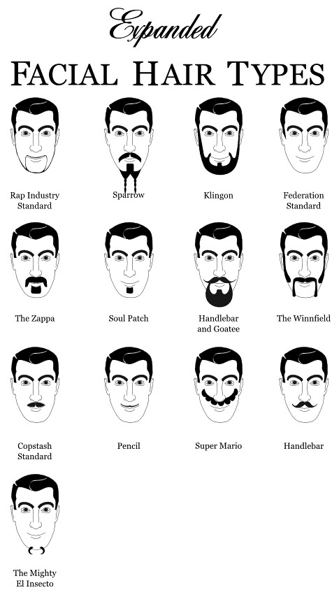 Natural Hair Types Chart: Expanded Facial Hair Types 2 | www.dyers.org/blog/beards/beau2026 | Flickr,Chart