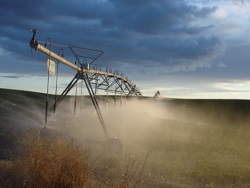 Irrigation-Pivot at Dusk | by EcologyWA