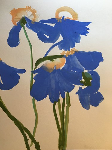blue petals gouache | by betsyness