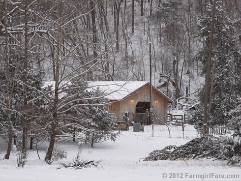 Snowy day at the sheep barn 1 - FarmgirlFare.com | by Farmgirl Susan