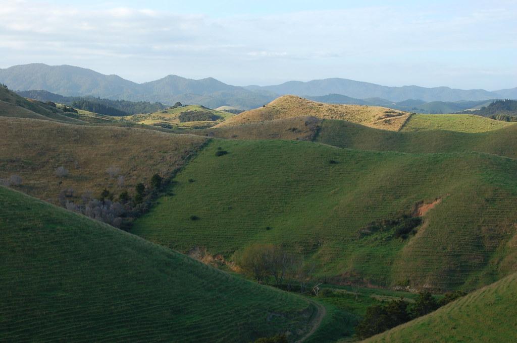 2009 Jan NZ Far North 101