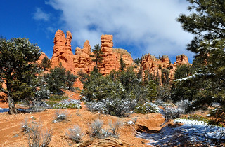 Red Canyon: Striking Beauty! | by Pat's Pics36