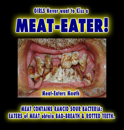 Meat Eaters Beef Animal Protein Rotten Steak Equals Bad Br
