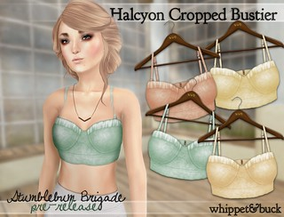 Halcyon Cropped Bustier | by Kota Buck : Whippet & Buck