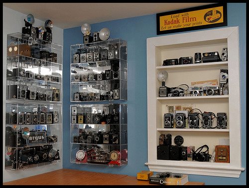 My Camera Collection | by Gina Ricciardi