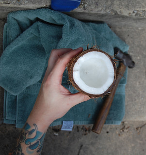 opened coconut | by JustyCinMD