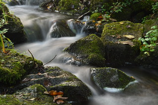 Silky Stream | by Bardsea Photography