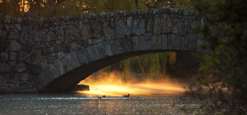 Beacon Hill Bridge at Sunrise | by C McCann