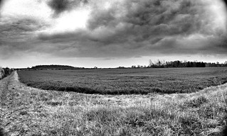Corner of a farmers field black and white | by Broo_am (Andy B)