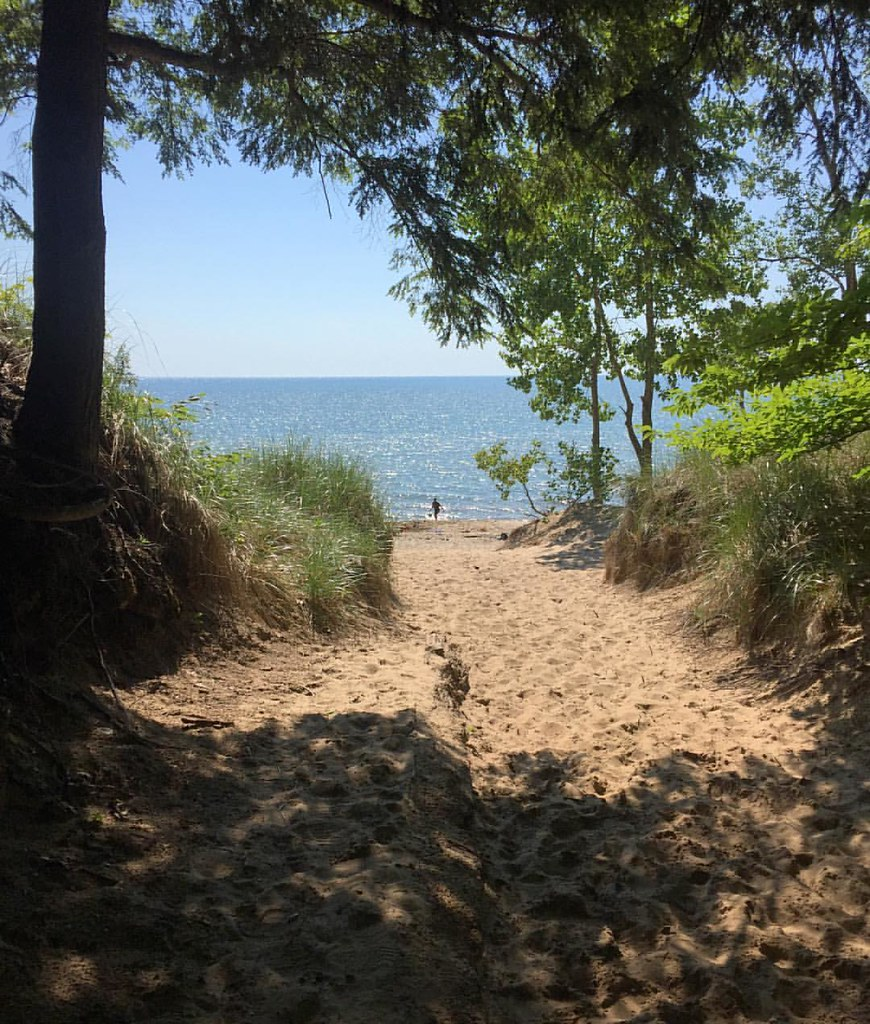 What Will You Discover Today? #water #beach #dunes #lakemichigan #puremichigan #path #leadinglines #blessed