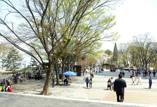 C16-Seoul-Mont Namsan-Tour-j7 (9)