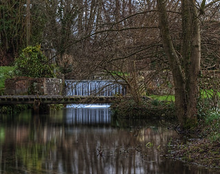 The Mill stream at Suton Scotney | by neilalderney123