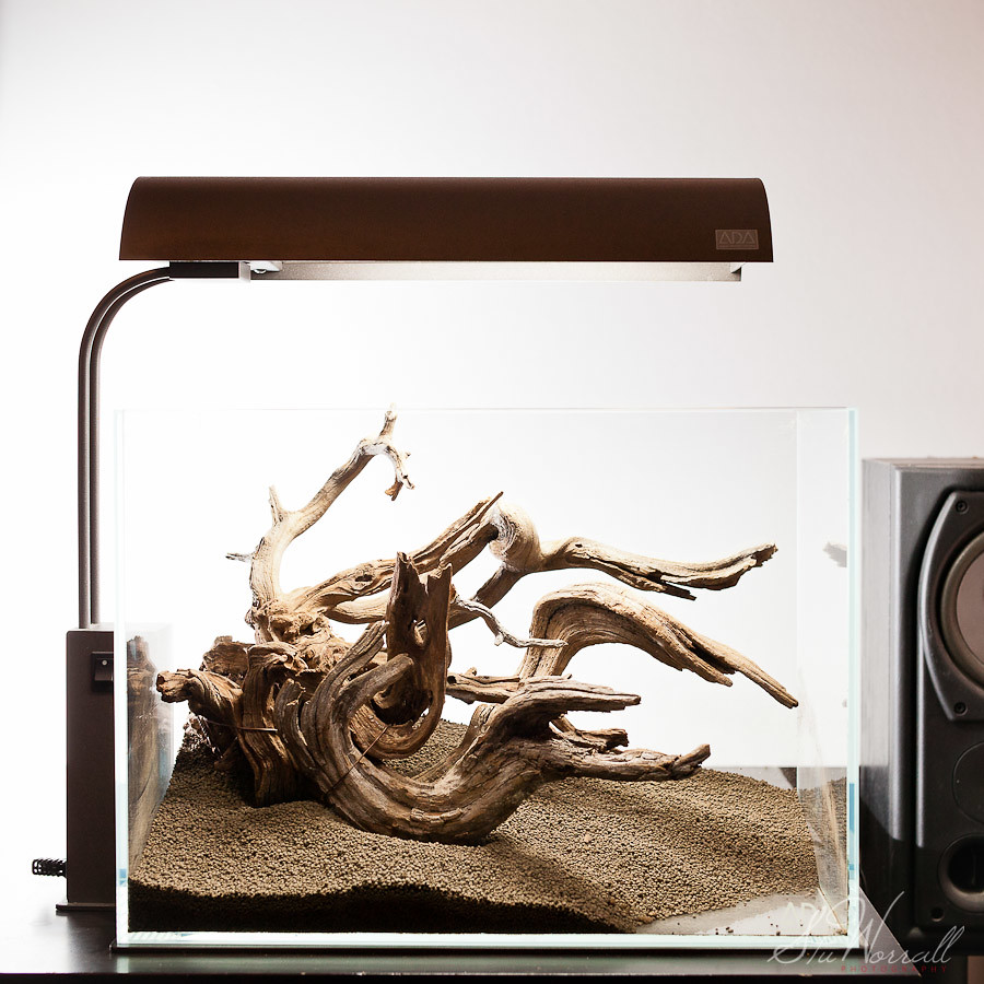 ... ADA Mini M Aquascape | By Stu Worrall Photography