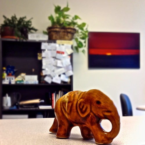 124 365 1 The Elephant In The Room Hcs Timothy Valentine Flickr