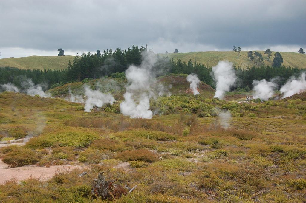 2009 Jan NZ Rotorua 401