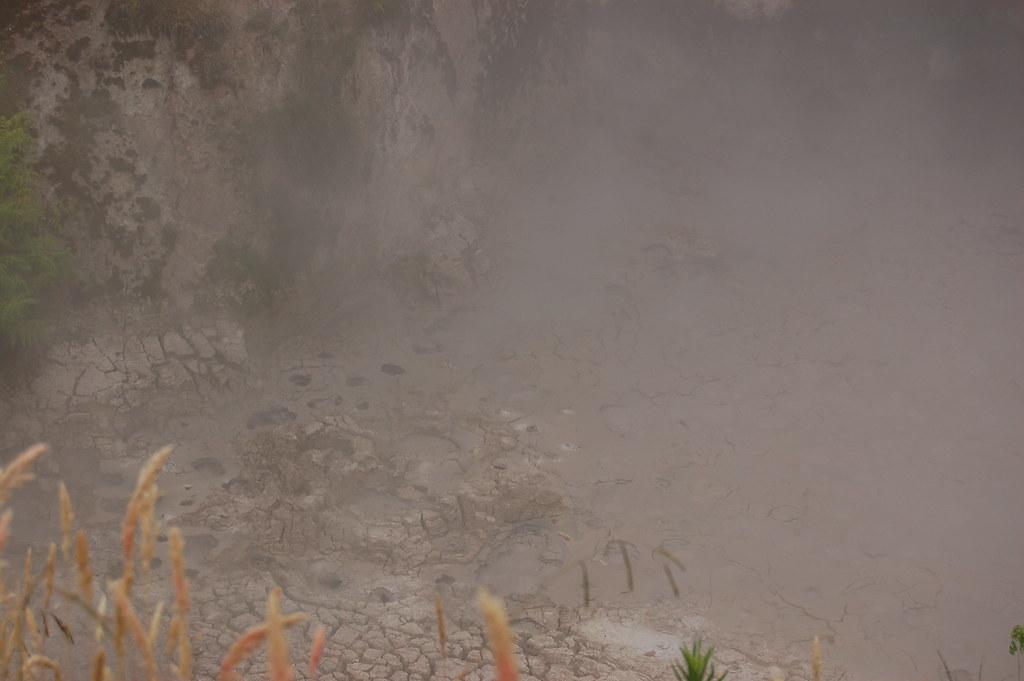 2009 Jan NZ Rotorua 453