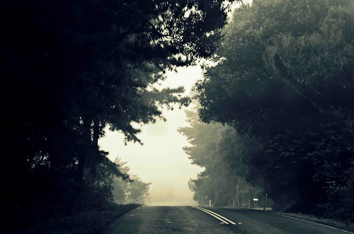The road unfolds | by designgallery