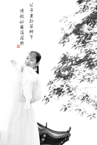 Singing dancers(輕歌曼舞) | by yuqiu photography