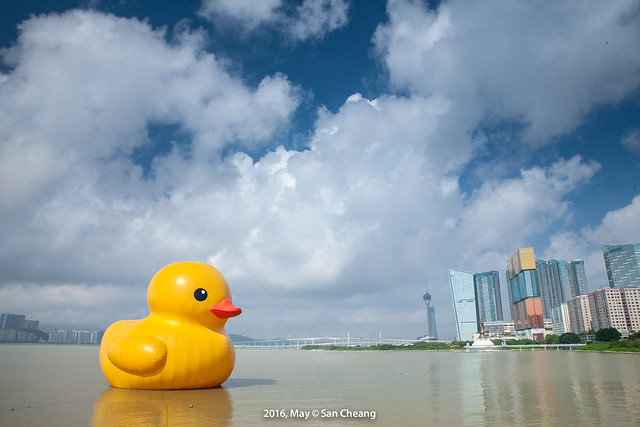 Rubber Duck @ Macau
