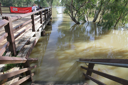 Water rising up the steps of Bourke wharf | by ABC Open Western Plains NSW