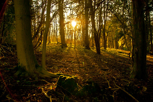 Tring Sunset | by icomley