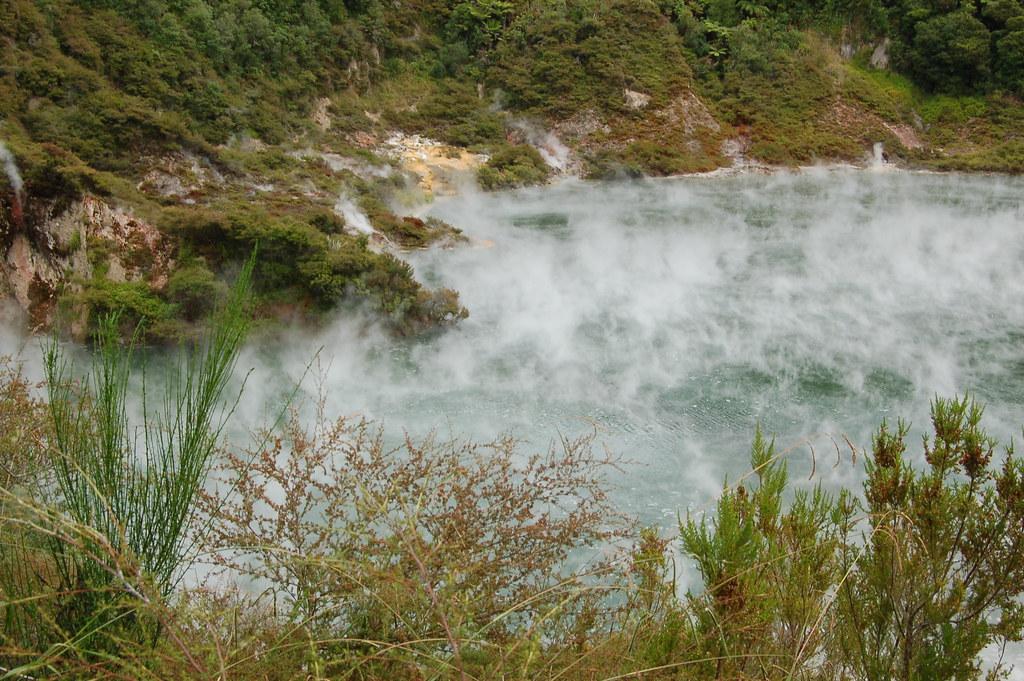 2009 Jan NZ Rotorua Volcanic Valley 026