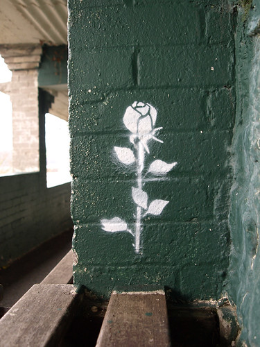 Stencilled Rose | by chrisinplymouth